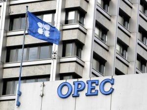 OPEC: ABD'nin petrol üretimindeki artış, kısıntıları etkilemez