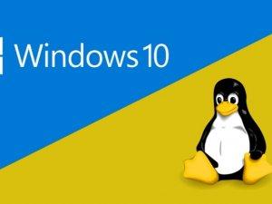 Microsoft kendi Linux sürümünü dağıtacak!