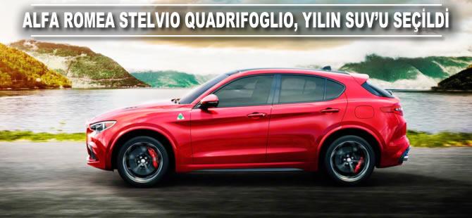 Alfa Romeo Stelvio Quadrifoglio, yılın SUV'u seçildi