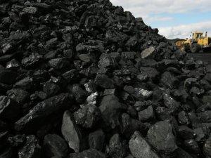 """""""Kömür sahasının özelleştirilmesi cari açığın kapanmasına katkı sağlayacak"""""""