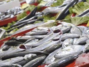 Yıllık 7.6 kilogram Balık tüketiyoruz