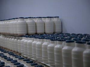 Şanlıurfa'da üretiliyor dışarıya ihraç ediliyor!