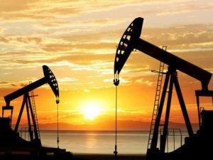 Ham petrol üretim beklentisi aşağı çekildi