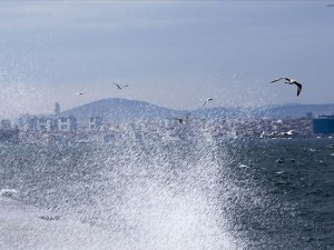 Olumsuz hava koşulları nedeniyle İDO ve BUDO'nun bazı seferleri iptal edildi