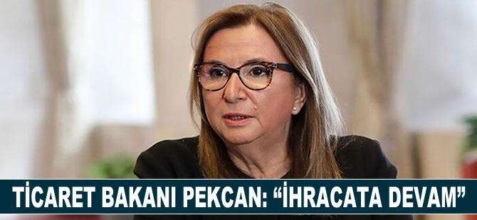 "Ticaret Bakanı Pekcan: ""İhracata Devam"""