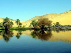 Nil Nehri'nin suyu petrolden temizleniyor