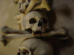 Bavulalrından insan iskeletleri çıktı