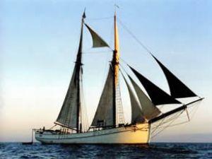 M/S Hulda adlı tarihi gemi İstanbul'a geldi