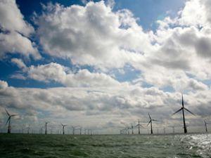 Dünyanın en büyük rüzgar gülü çiftliği kuruldu