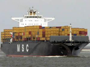 MSC, MSC Emanuela gemisini teslim aldı