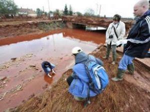 Karadeniz ve Boğaza zehirli çamur tehditi