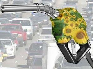 Biodizelde yeni yatırımlar yolda