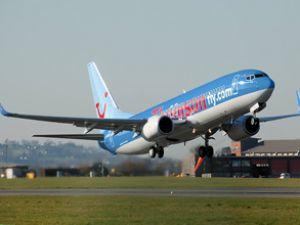 Thomson 787 uçaklarının kullanımını erteledi
