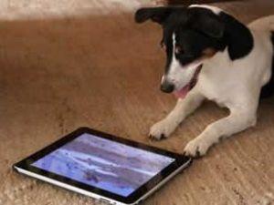 Dikkat edin, iPad'iniz sizi hasta etmesin