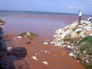 İzmir Körfezi, Tuna gibi kızıla büründü