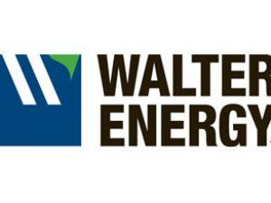 Walter Energy liman terminali devraldı