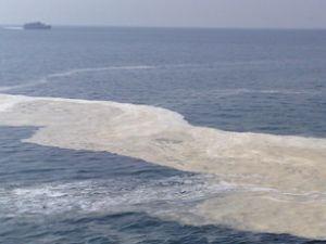Kartal'da deniz yağ tabakasıyla kaplandı