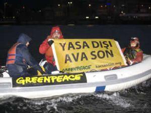 Greenpeace trol teknelerinin peşine düştü