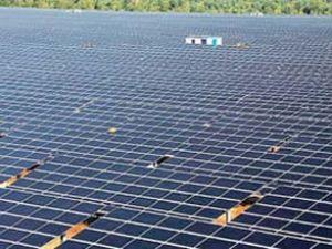 Türkiye'nin ilk enerji tarlası kuruluyor