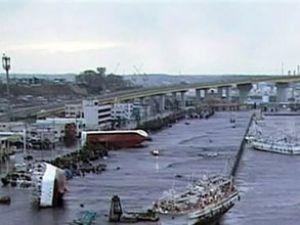 Japon ordusu bir limanda 400 ceset buldu