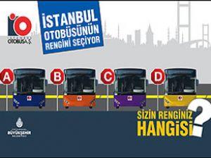 İstanbullular otobüsünün rengini seçiyor