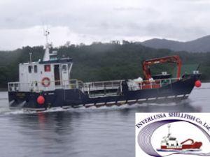 400kw Doosan motoru gücünde gemi