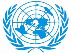 BM korsanlar için özel mahkemeyi tartıştı