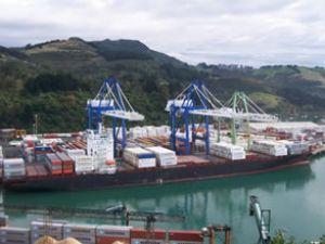 Maersk Dabou, Otago Limanı'na bindirdi