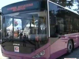 İstanbul'un erguvan otobüsleri yola çıkıyor