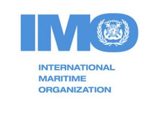 IMO'da seçimler için geri sayım başladı