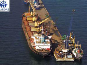 Mardaş Limanı'nda RTG'ler elektrikli oldu