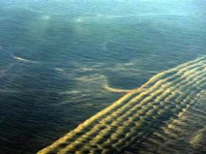 Alaska'da BP'nin boru hattında sızıntı