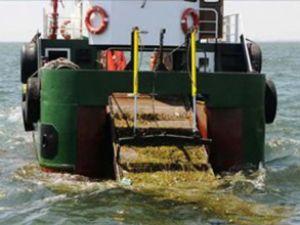 İzmir'de denizden 286 ton çöp toplandı