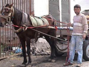 Alkollü at arabası kullanana 1200 avro ceza