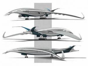 Geleceğin uçağına 'Çamur çulluğu' ilhamı