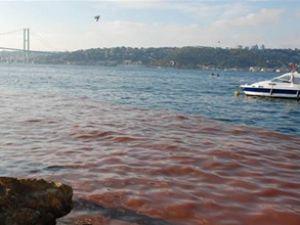İstanbul Boğazı kıyıları kırmızıya boyandı