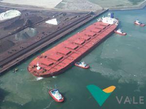 Vale, 19 cevher gemisini satışa çıkarıyor