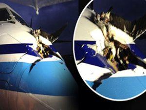 Albatros uçakta 1 metrelik delik açtı