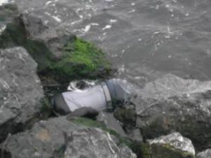 Yedikule sahilinde erkek cesedi bulundu