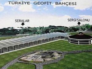 Dünyanın en büyük geofit bahçesi