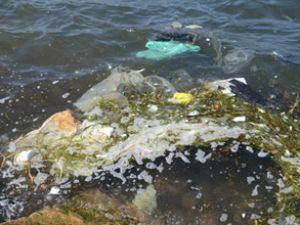 Yağış, Fethiye Körfezi'nde kirliliğe yol açtı