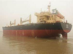 Delphin, yeni kuru yük gemisini teslim aldı
