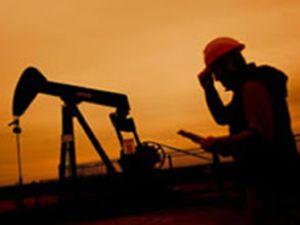 3 şirkete 3 ilde petrol arama ruhsatı