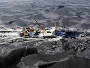 Tuna Nehri'nin buzları Belgrat'ı vurdu