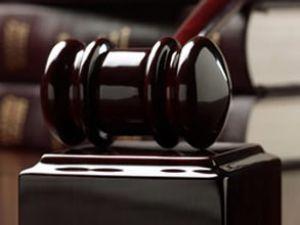 Anne katiline 20 yıl hapis cezası