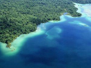 Okyanuslarda asitleşmede büyük artış
