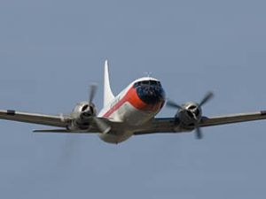 Porto Rico'da kargo uçağı düştü: 2 ölü