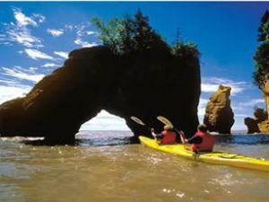 Doğanın yeni harikası: Fundy Körfezi