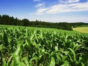 Çiftçiye bu yıl 7.6 milyar liralık destek geliyor