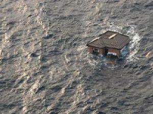 Tsunami sonrası hayat normale dönüyor!